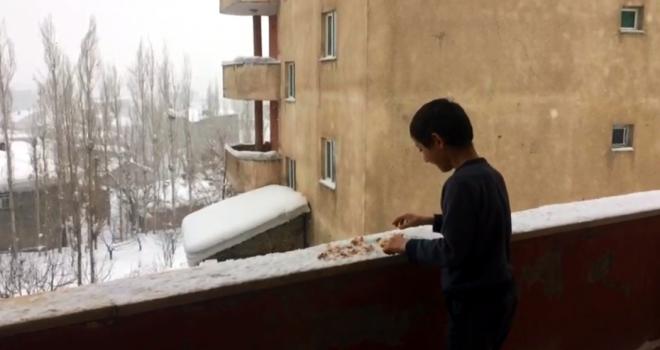 10 yaşındaki Mehmet, aç kalan kuşları besliyor