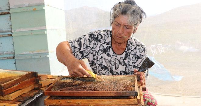 27 yıldır Yüksekova'da arıcılık yapıyor